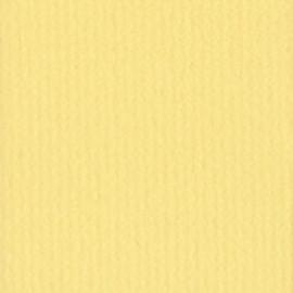 241 jaune